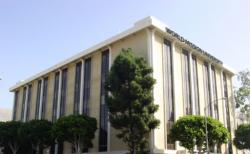 월드미션대학교