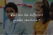성 정체성이 1백개가 넘는다고 가르친 BBC 교육 영상. ©BBC