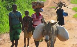모잠비크의 부녀자들(상기 사진은 본 기사 내용과 직접적 관련이 없음).