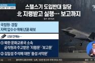 북한 지령을 받고 미국산 스텔스 전투기 F-35A 도입 반대 활동을 한 혐의를 받는 이들에게 국가보안법 4조가 적용됐다. ⓒ채널A 캡쳐